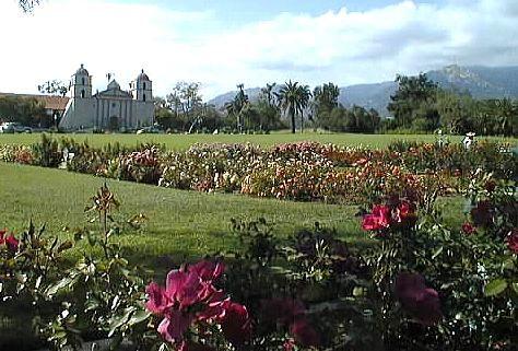 san marcos growers roses